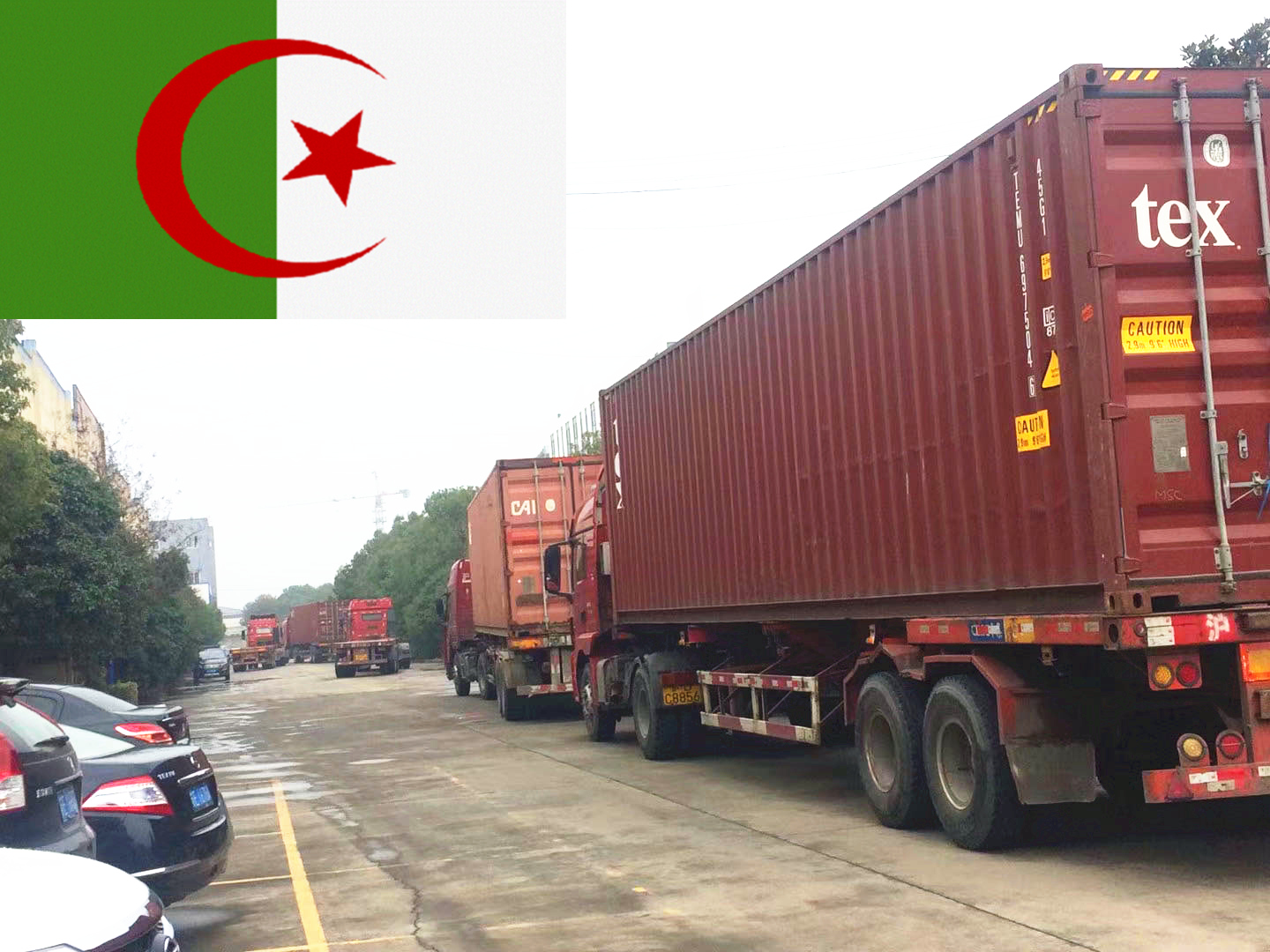 Loading 21 containers to Algeria(Wire and cable machine)